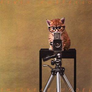 cat-director