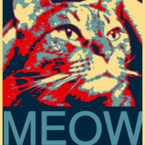 cat-prez