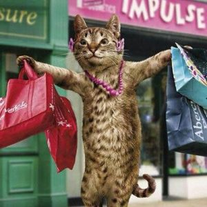 cat-shopaholic