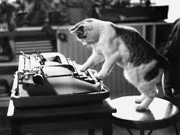 Cat Writing