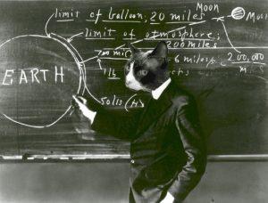 ScienceCat